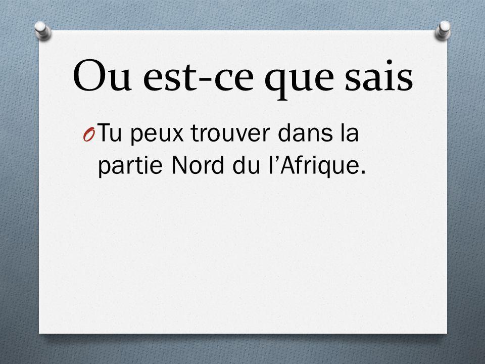 Ou est-ce que sais O Tu peux trouver dans la partie Nord du lAfrique.