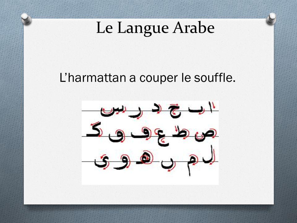 Le Langue Arabe Lharmattan a couper le souffle.