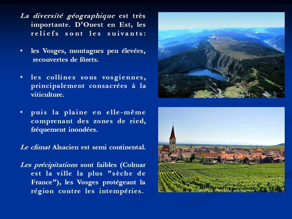 La diversité géographique est très importante. D'Ouest en Est, les reliefs sont les suivants: les Vosges, montagnes peu élevées, recouvertes de fôrets