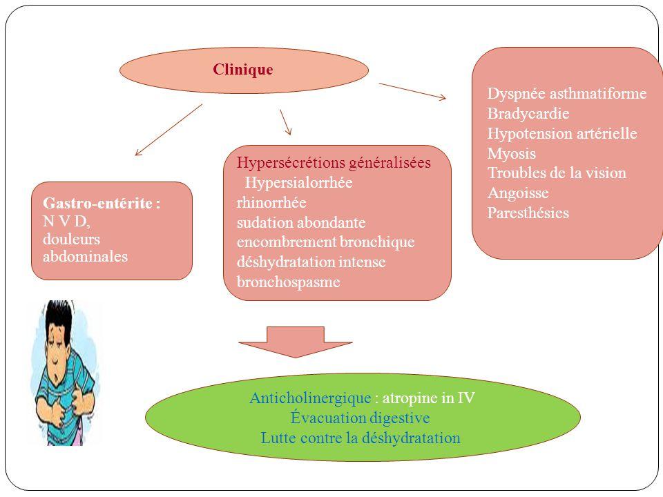 Clinique Dyspnée asthmatiforme Bradycardie Hypotension artérielle Myosis Troubles de la vision Angoisse Paresthésies Hypersécrétions généralisées Hypersialorrhée rhinorrhée sudation abondante encombrement bronchique déshydratation intense bronchospasme Gastro-entérite : N V D, douleurs abdominales Anticholinergique : atropine in IV Évacuation digestive Lutte contre la déshydratation