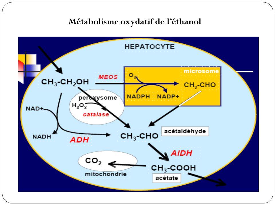 Incubation & durée Incubation : 6 à 48 h (12 h en moyenne) Mécanisme de toxicité 1) Amanitines 2) Phallotoxines 3) Virotoxines Inhibition complète de lARN polymérase II (transcription de lADN en ARNm).