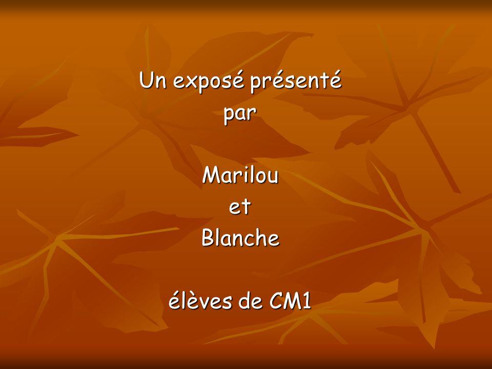 Un exposé présenté parMarilouetBlanche élèves de CM1