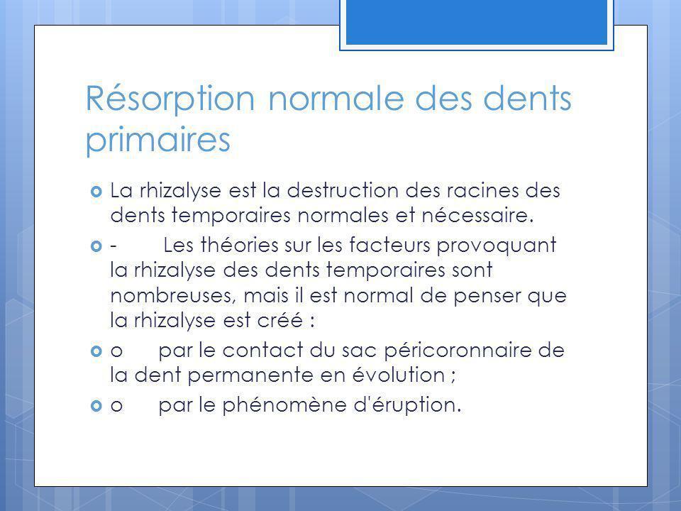 Résorption en relation avec la pression: Suite à un traitement orthodontique Les traitements dorthodontie entrainent des résorptions surtout sur les dents monoradiculées.
