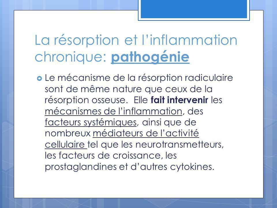 La résorption et linflammation chronique: pathogénie Le mécanisme de la résorption radiculaire sont de même nature que ceux de la résorption osseuse.