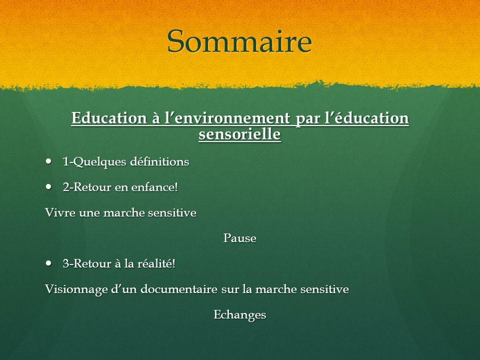 Sommaire Education à lenvironnement par léducation sensorielle 1-Quelques définitions 1-Quelques définitions 2-Retour en enfance! 2-Retour en enfance!