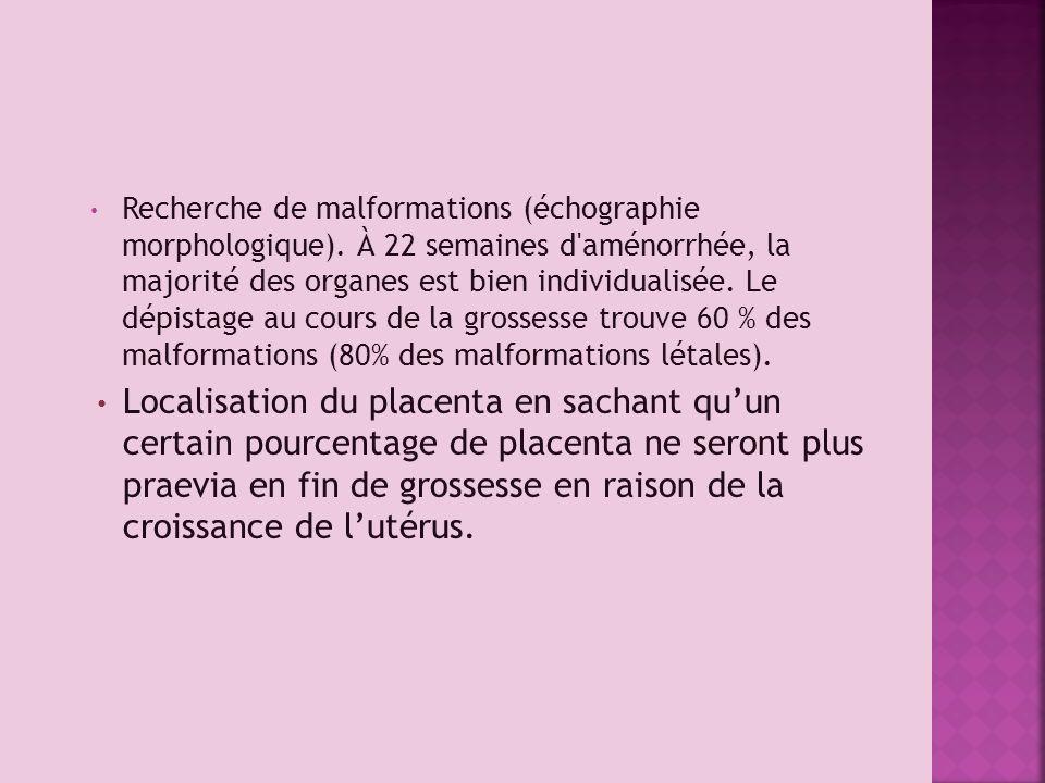 Recherche de malformations (échographie morphologique). À 22 semaines d'aménorrhée, la majorité des organes est bien individualisée. Le dépistage au c