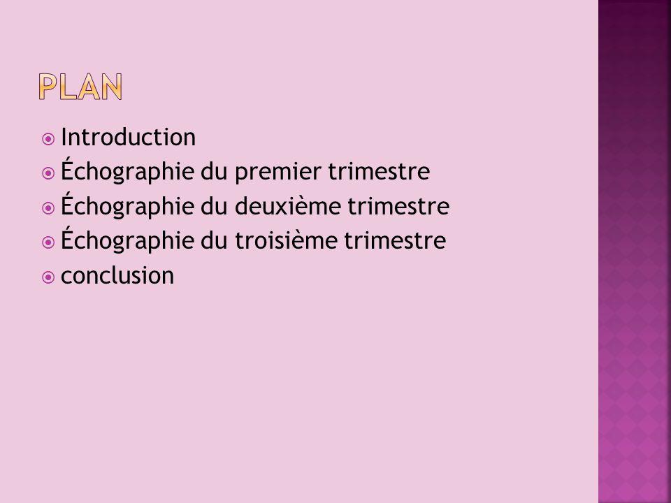 Introduction Échographie du premier trimestre Échographie du deuxième trimestre Échographie du troisième trimestre conclusion