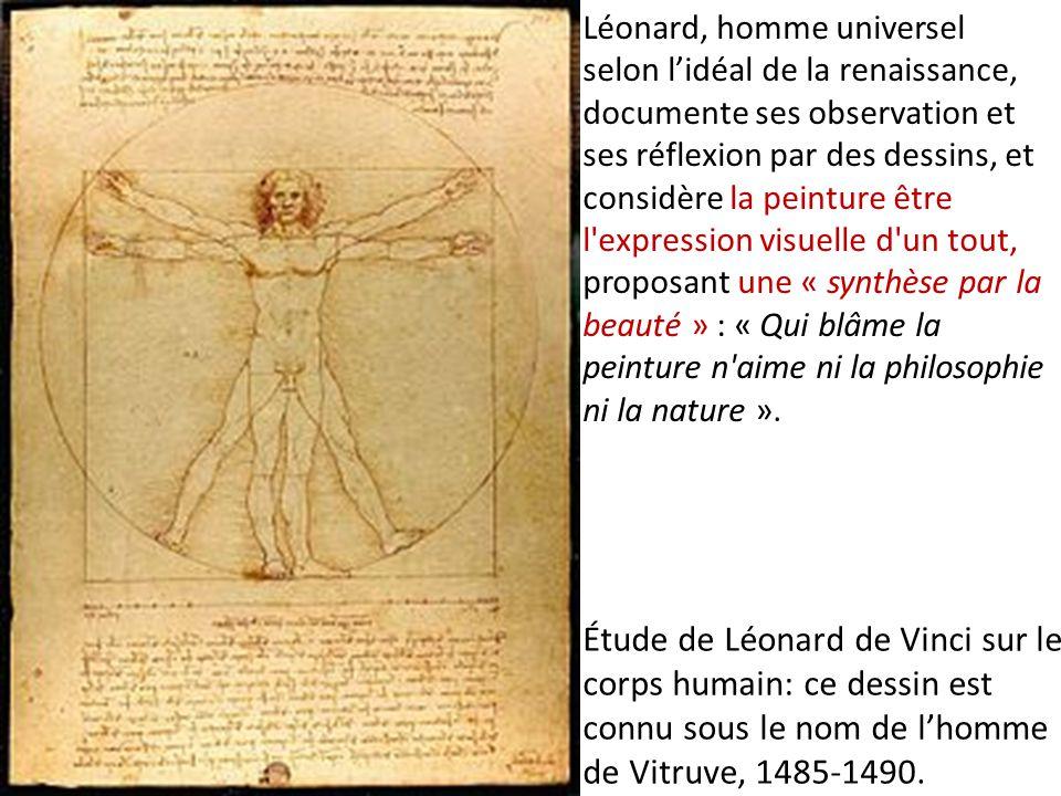 Étude de Léonard de Vinci sur le corps humain: ce dessin est connu sous le nom de lhomme de Vitruve, 1485-1490. Léonard, homme universel selon lidéal