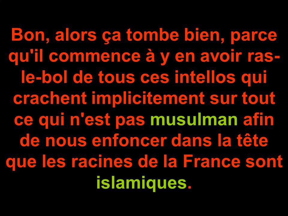 Bon, alors ça tombe bien, parce qu il commence à y en avoir ras- le-bol de tous ces intellos qui crachent implicitement sur tout ce qui n est pas musulman afin de nous enfoncer dans la tête que les racines de la France sont islamiques.