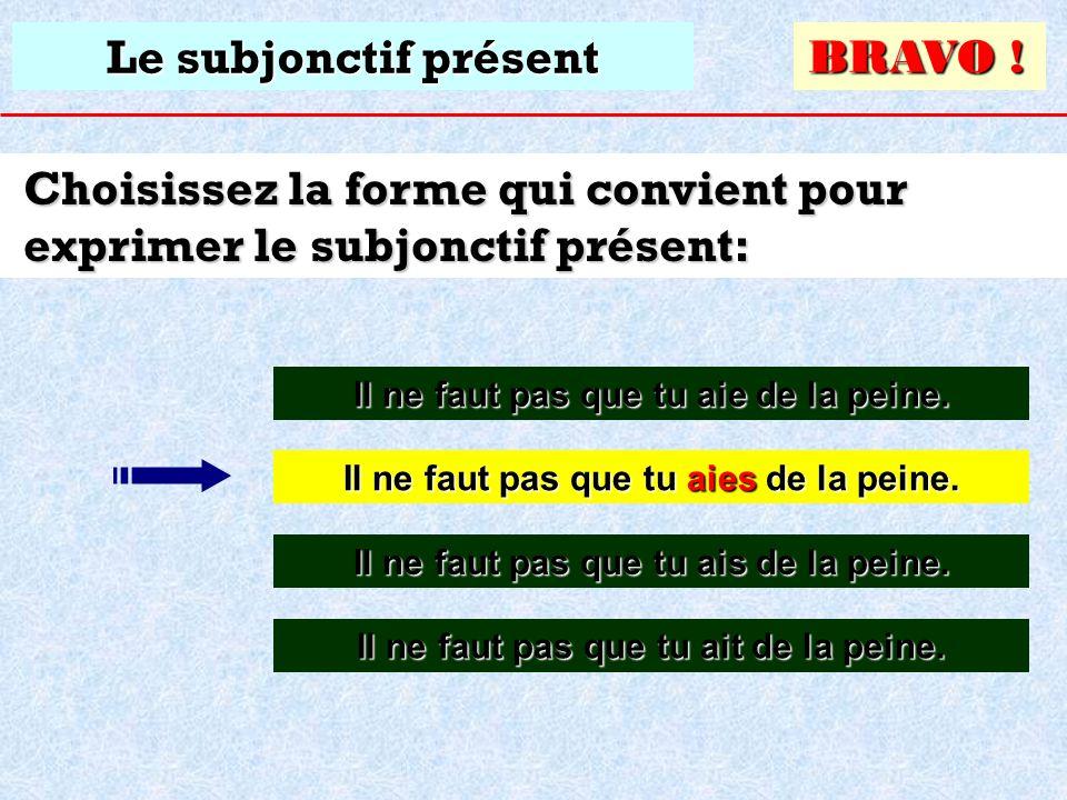 Le subjonctif présent Choisissez la forme qui convient pour exprimer le subjonctif présent: Il ne faut pas que tu aies de la peine. Il ne faut pas que