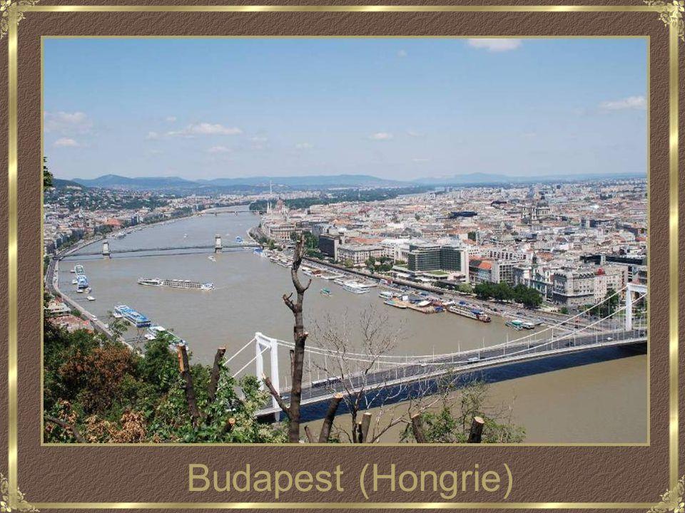 Le beau Danube bleu El bello Danubio Azul