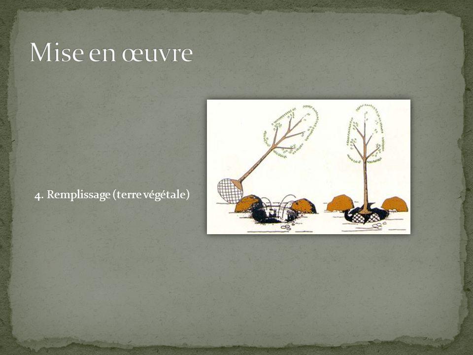 4. Remplissage (terre végétale)