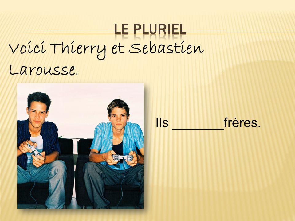Voici Thierry et Sebastien Larousse. Ils _______frères.