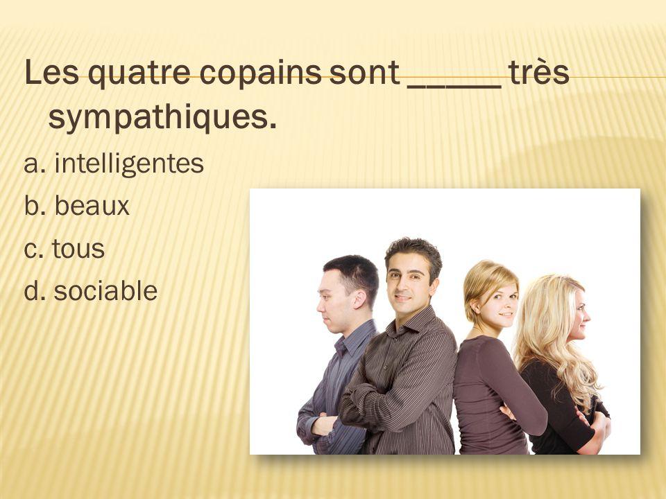 Les quatre copains sont _____ très sympathiques. a. intelligentes b. beaux c. tous d. sociable