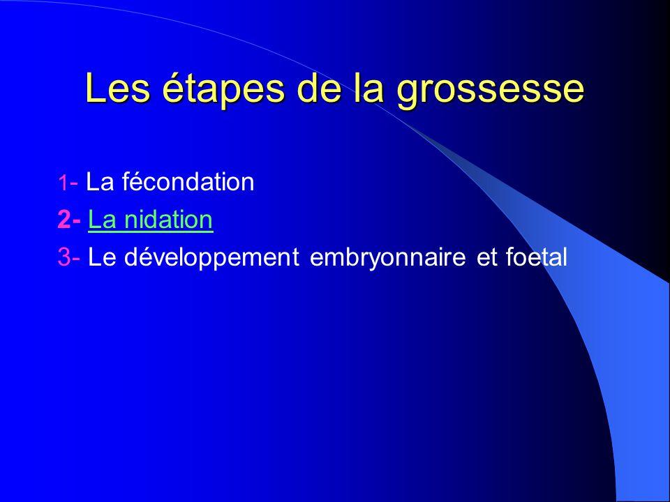 Les étapes de la grossesse 1 - La fécondation 2- La nidation 3- Le développement embryonnaire et foetal