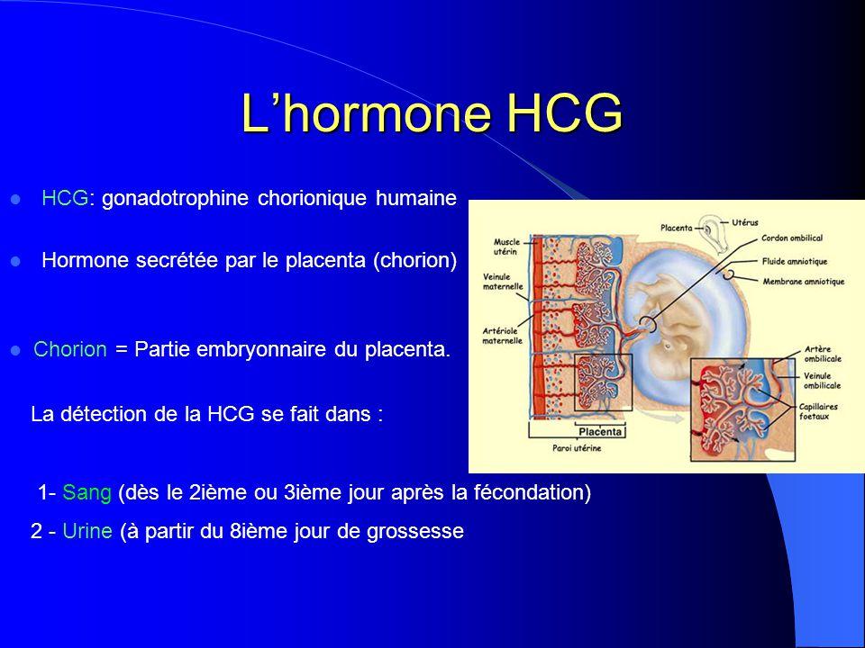 Lhormone HCG HCG: gonadotrophine chorionique humaine Hormone secrétée par le placenta (chorion) La détection de la HCG se fait dans : 1- Sang (dès le