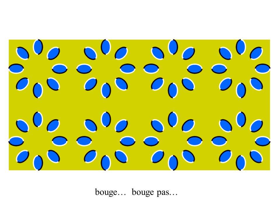 Lunettes 1.Découper les formes sur le carton 2.Assembler les lunettes 3.Placer les filtres : le rouge pour l œil gauche et le cyan-vert pour l œil droit 4.Assembler et coller les branches 5.Styler vos lunettes en collant une applique sur chaque cercle