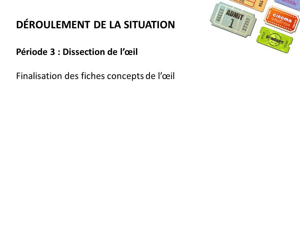 DÉROULEMENT DE LA SITUATION Période 3 : Dissection de lœil Finalisation des fiches concepts de lœil