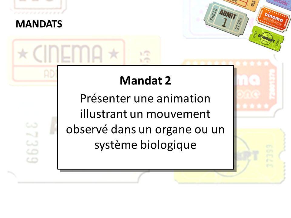 MANDATS Mandat 2 Présenter une animation illustrant un mouvement observé dans un organe ou un système biologique Mandat 2 Présenter une animation illu