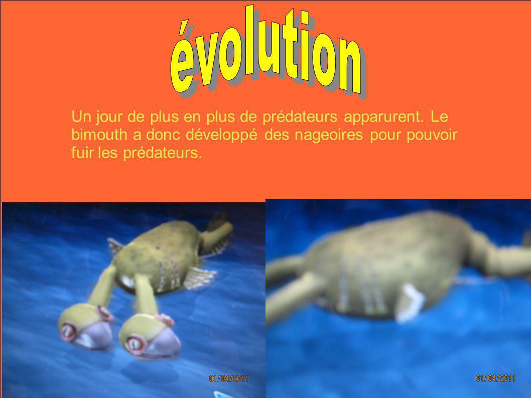Puisquils allaient plus vite, ils ont développé de plus grandes nageoires.