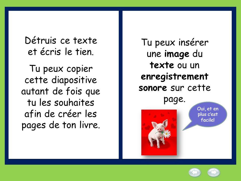 Détruis ce texte et écris le tien. Tu peux copier cette diapositive autant de fois que tu les souhaites afin de créer les pages de ton livre. Tu peux