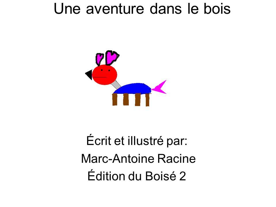 Une aventure dans le bois Écrit et illustré par: Marc-Antoine Racine Édition du Boisé 2
