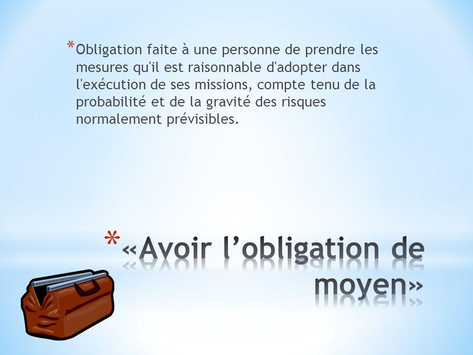 * Obligation faite à une personne de prendre les mesures qu'il est raisonnable d'adopter dans l'exécution de ses missions, compte tenu de la probabili
