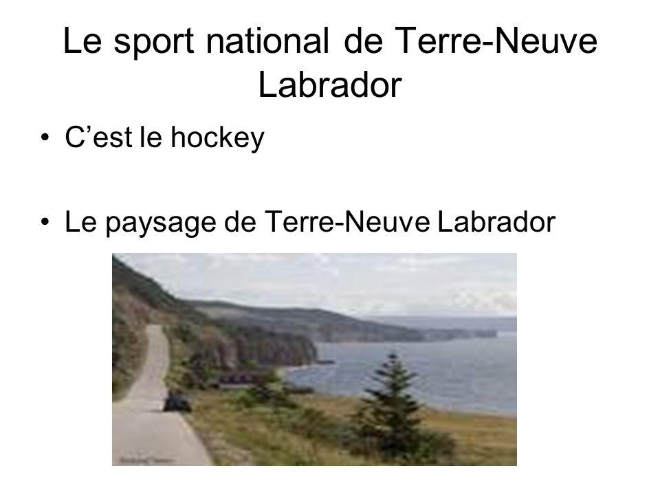 Le sport national de Terre-Neuve Labrador Cest le hockey Le paysage de Terre-Neuve Labrador