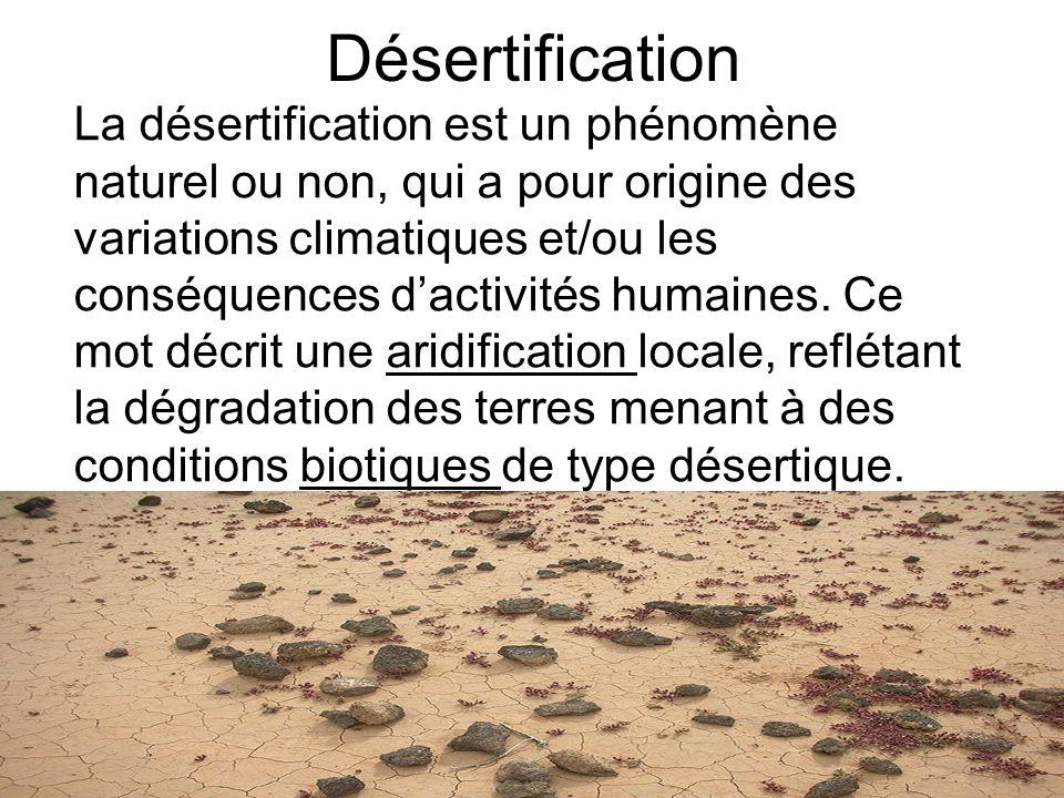 Désertification La désertification est un phénomène naturel ou non, qui a pour origine des variations climatiques et/ou les conséquences dactivités hu