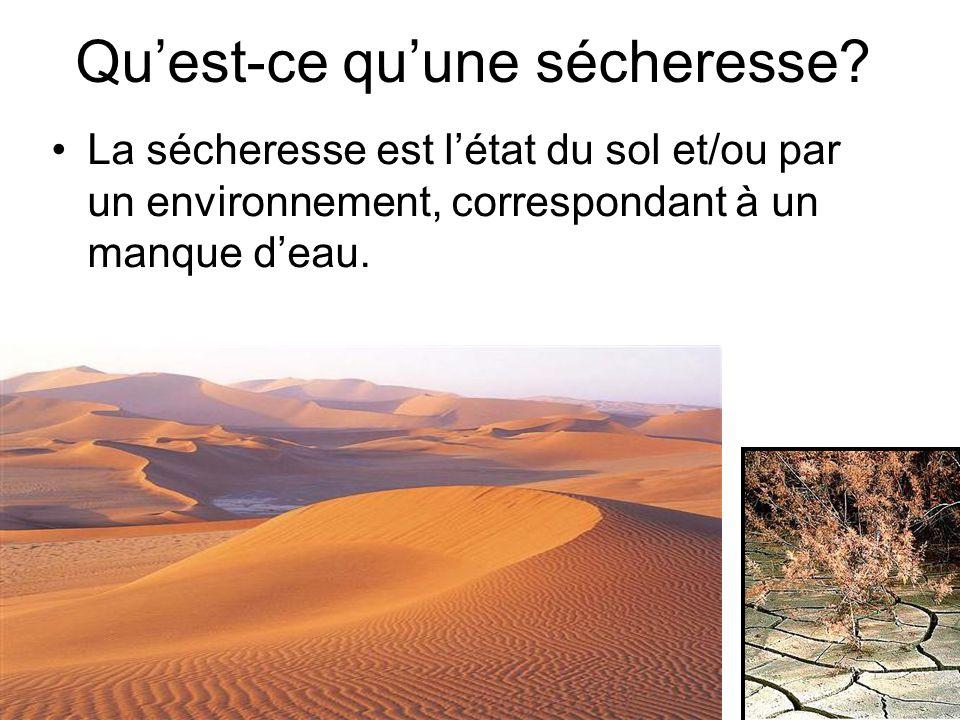 Quest-ce quune sécheresse? La sécheresse est létat du sol et/ou par un environnement, correspondant à un manque deau.