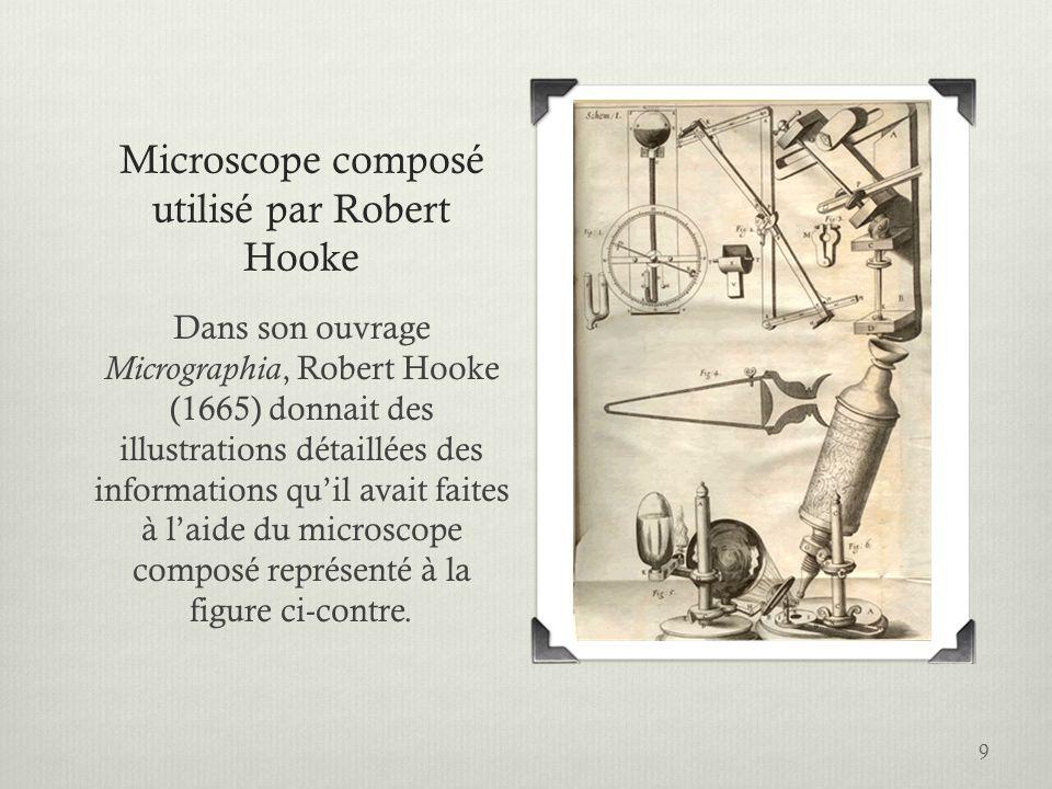 Microscope composé utilisé par Robert Hooke Dans son ouvrage Micrographia, Robert Hooke (1665) donnait des illustrations détaillées des informations q