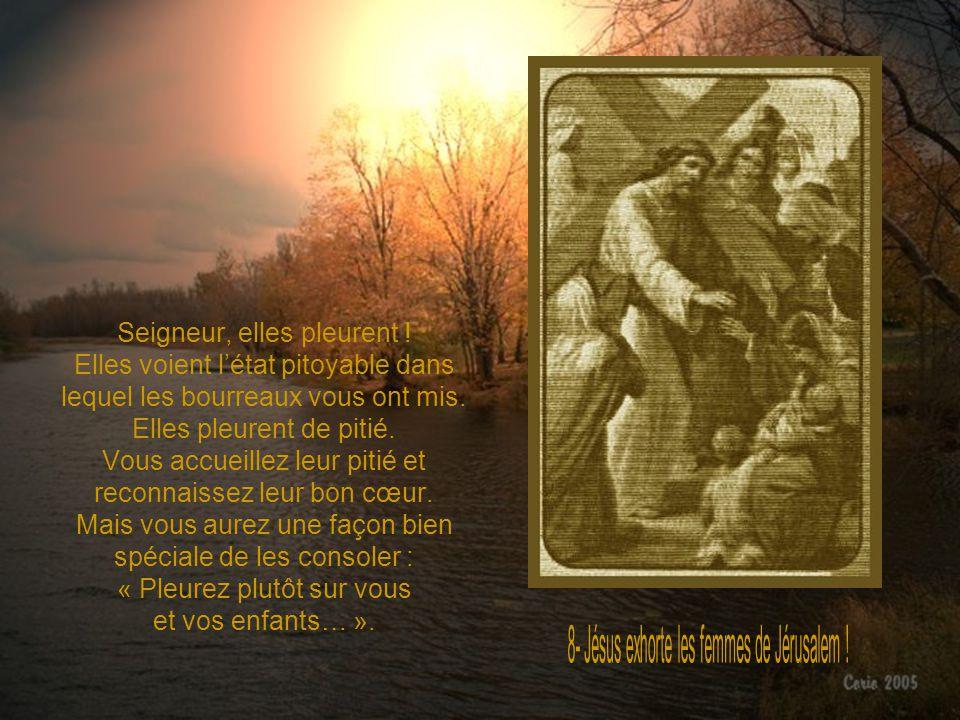 Doux Jésus, mes péchés sont de terribles endormeurs de conscience. Je mhabitue très vite au mal : un manque de générosité ici… une infidélité là… Mon