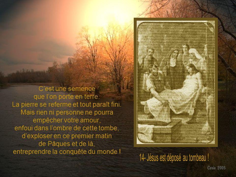 Doux Jésus, ici votre Passion prend fin, mais la compassion se poursuit en votre Mère ; vous nêtes plus suspendu sur la Croix, mais amoureusement blot