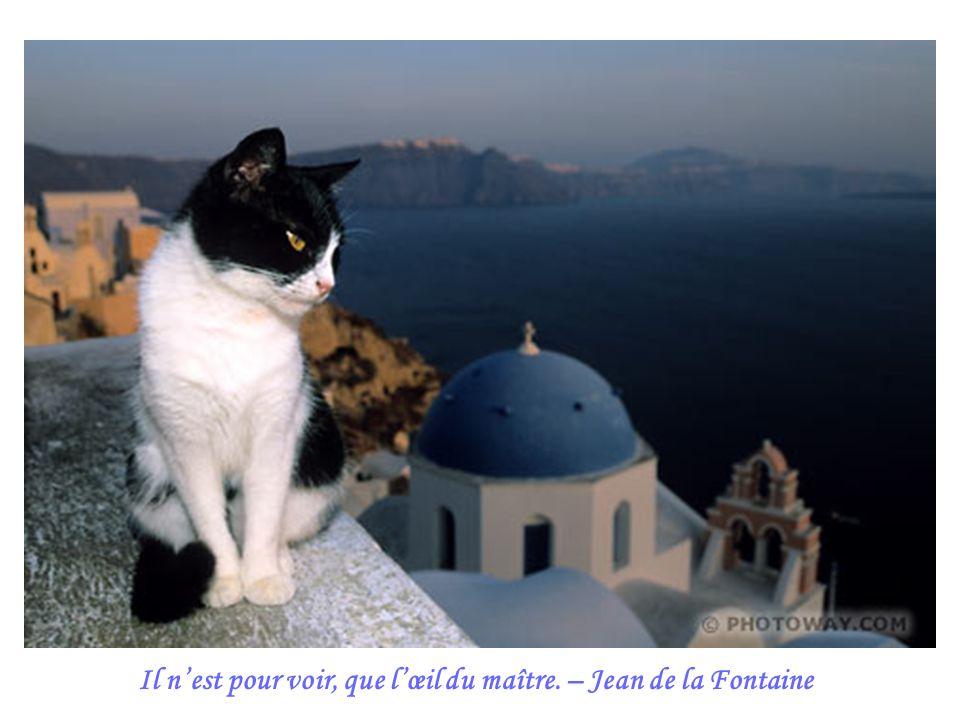 Il nest pour voir, que lœil du maître. – Jean de la Fontaine