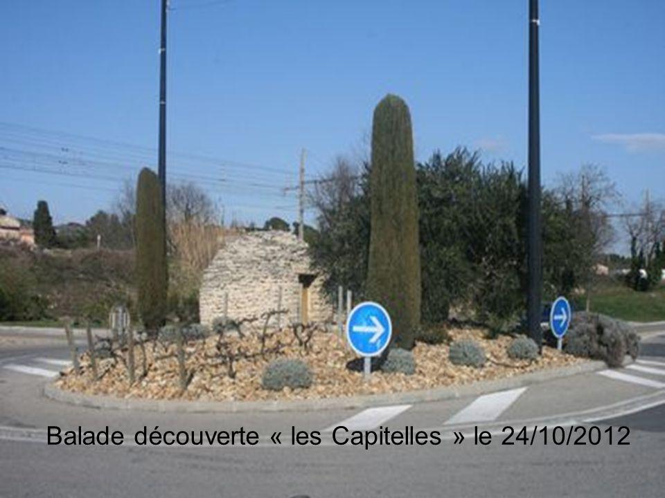 Balade découverte « les Capitelles » le 24/10/2012