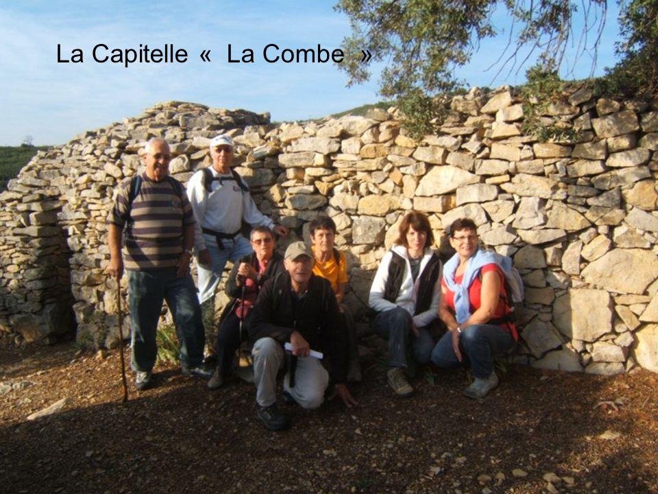 La Capitelle « Les Terrasses du Rhône »