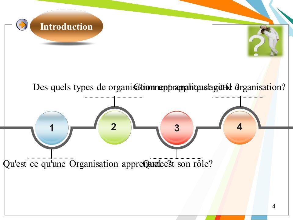 4 1 4 3 2 Comment appliquer cette organisation? Quel est son rôle? Des quels types de organisation apprenante s'agit-il ? Qu'est ce qu'une Organisatio