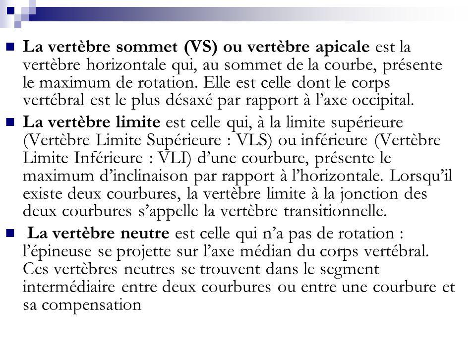 La vertèbre sommet (VS) ou vertèbre apicale est la vertèbre horizontale qui, au sommet de la courbe, présente le maximum de rotation. Elle est celle d
