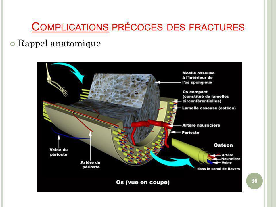 C OMPLICATIONS PRÉCOCES DES FRACTURES Rappel anatomique 36
