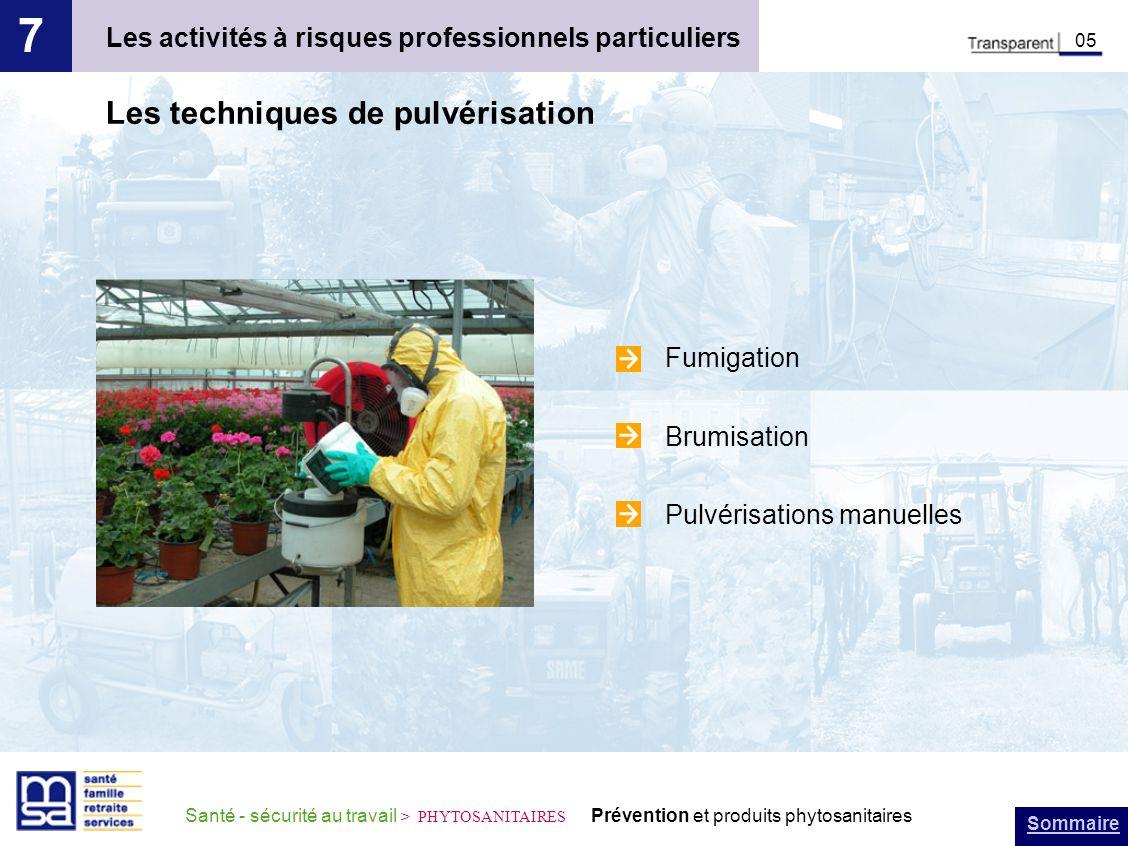 Sommaire Santé - sécurité au travail > PHYTOSANITAIRES Prévention et produits phytosanitaires Les activités à risques professionnels particuliers 7 05