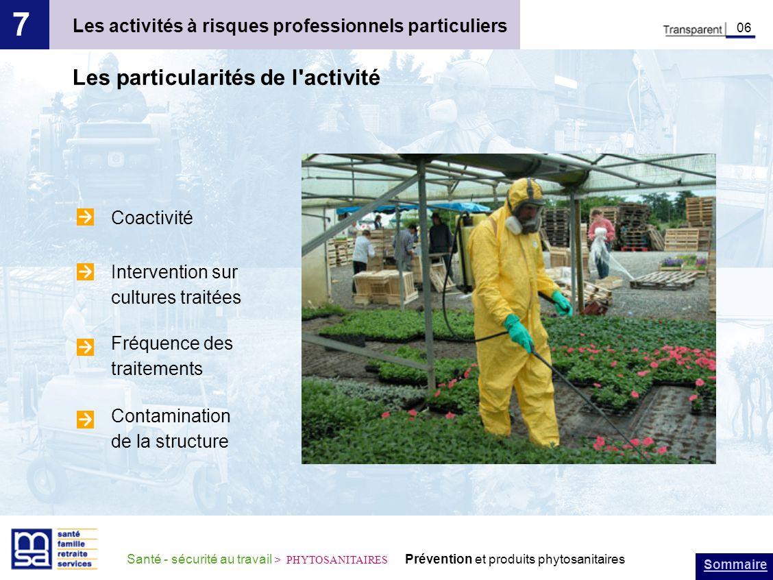 Sommaire Santé - sécurité au travail > PHYTOSANITAIRES Prévention et produits phytosanitaires Les activités à risques professionnels particuliers 7 06