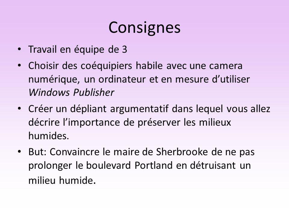 Consignes (suite) Lire larticle tiré de la cyberpresse, la Tribune : http://www.cyberpresse.ca/la- tribune/sherbrooke/200811/17/01-801328- boulevard-de-portlandla-ville-envisage-une- jonction-avec-la-1055.php