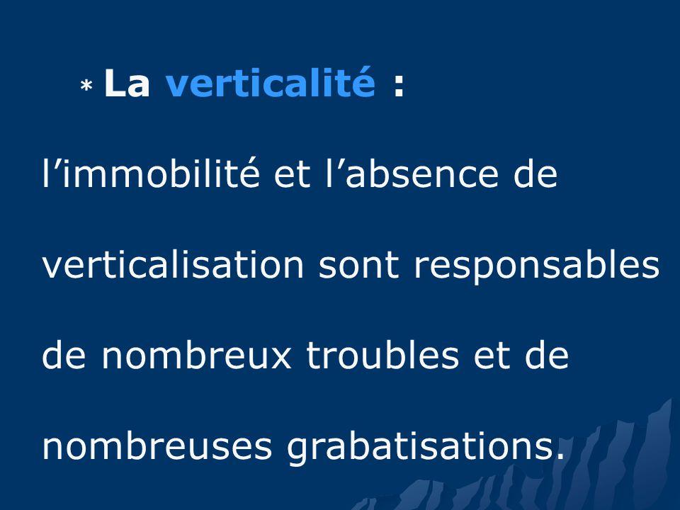 * La verticalité : limmobilité et labsence de verticalisation sont responsables de nombreux troubles et de nombreuses grabatisations.