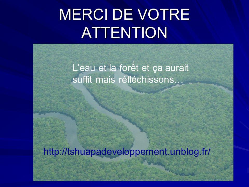 MERCI DE VOTRE ATTENTION Leau et la forêt et ça aurait suffit mais réfléchissons… http://tshuapadeveloppement.unblog.fr/