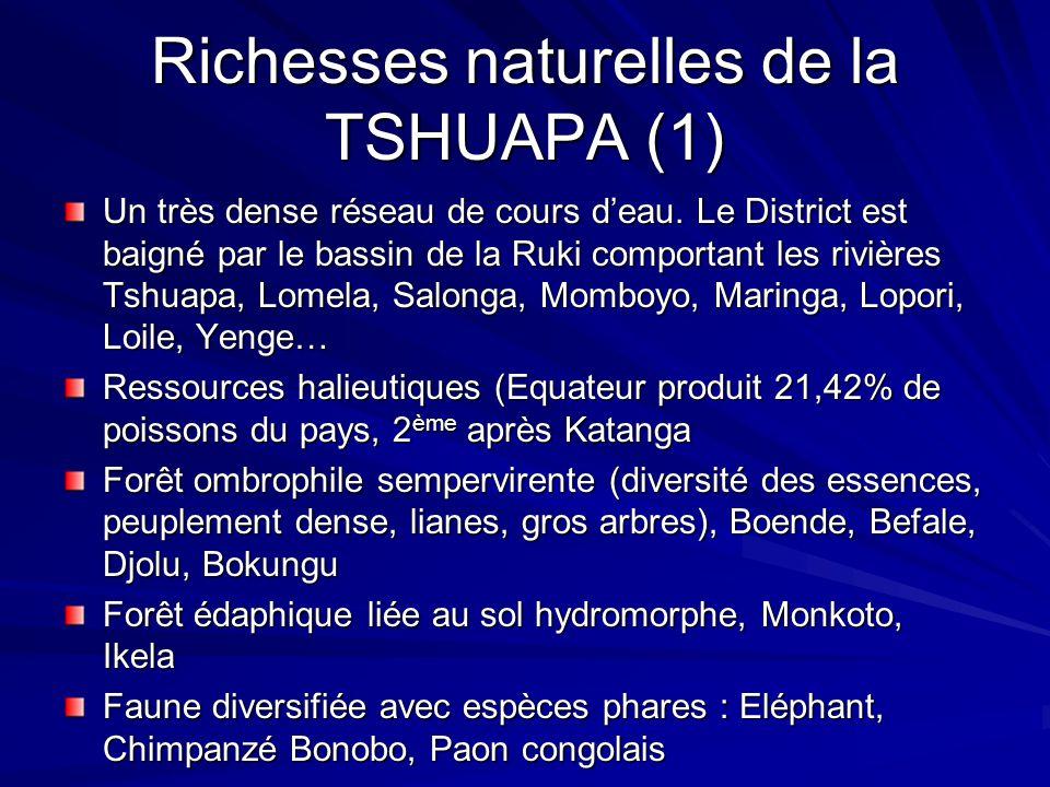 Richesses naturelles de la TSHUAPA (1) Un très dense réseau de cours deau. Le District est baigné par le bassin de la Ruki comportant les rivières Tsh