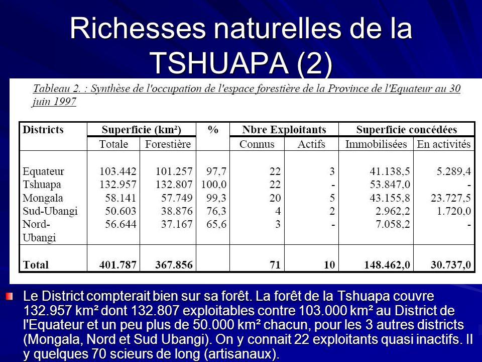 Richesses naturelles de la TSHUAPA (2) Le District compterait bien sur sa forêt. La forêt de la Tshuapa couvre 132.957 km² dont 132.807 exploitables c