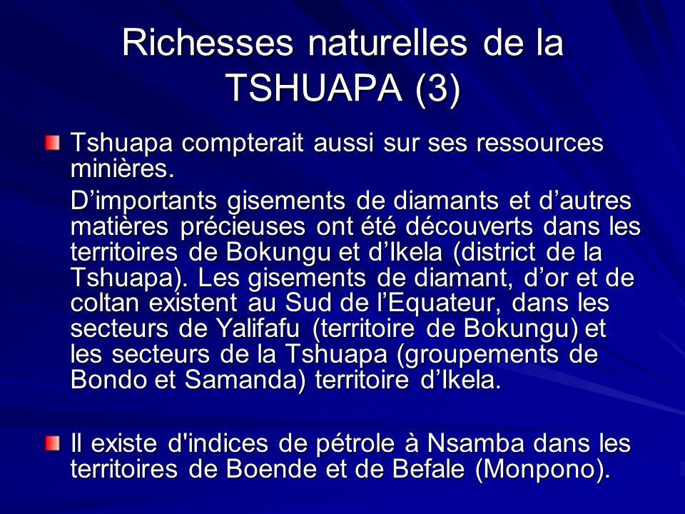 Richesses naturelles de la TSHUAPA (3) Tshuapa compterait aussi sur ses ressources minières. Dimportants gisements de diamants et dautres matières pré