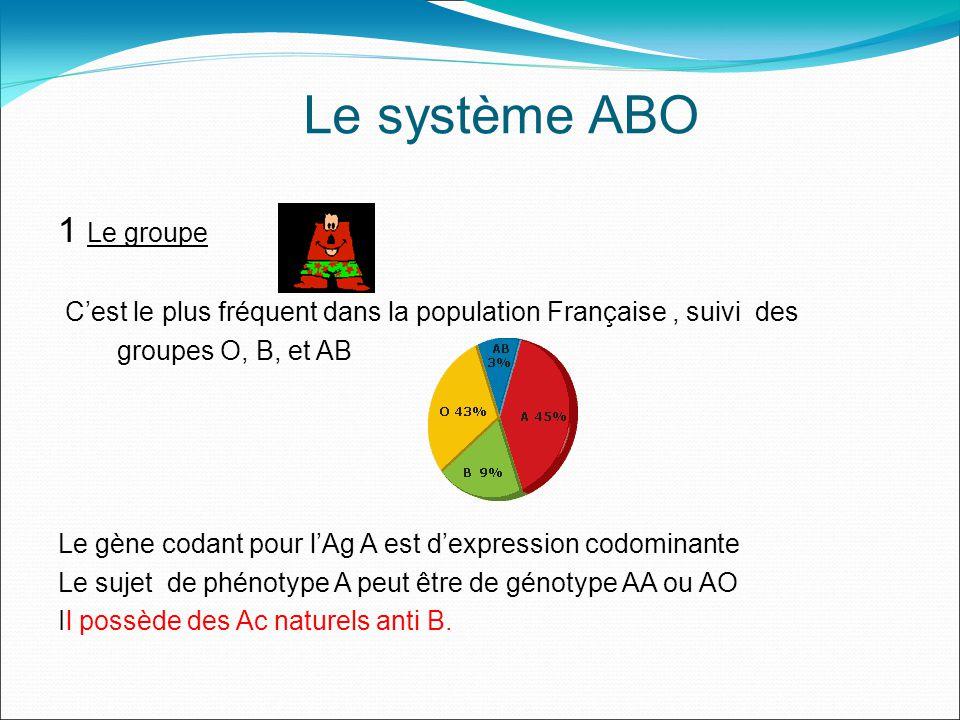 1 Le groupe Cest le plus fréquent dans la population Française, suivi des groupes O, B, et AB Le gène codant pour lAg A est dexpression codominante Le sujet de phénotype A peut être de génotype AA ou AO Il possède des Ac naturels anti B.