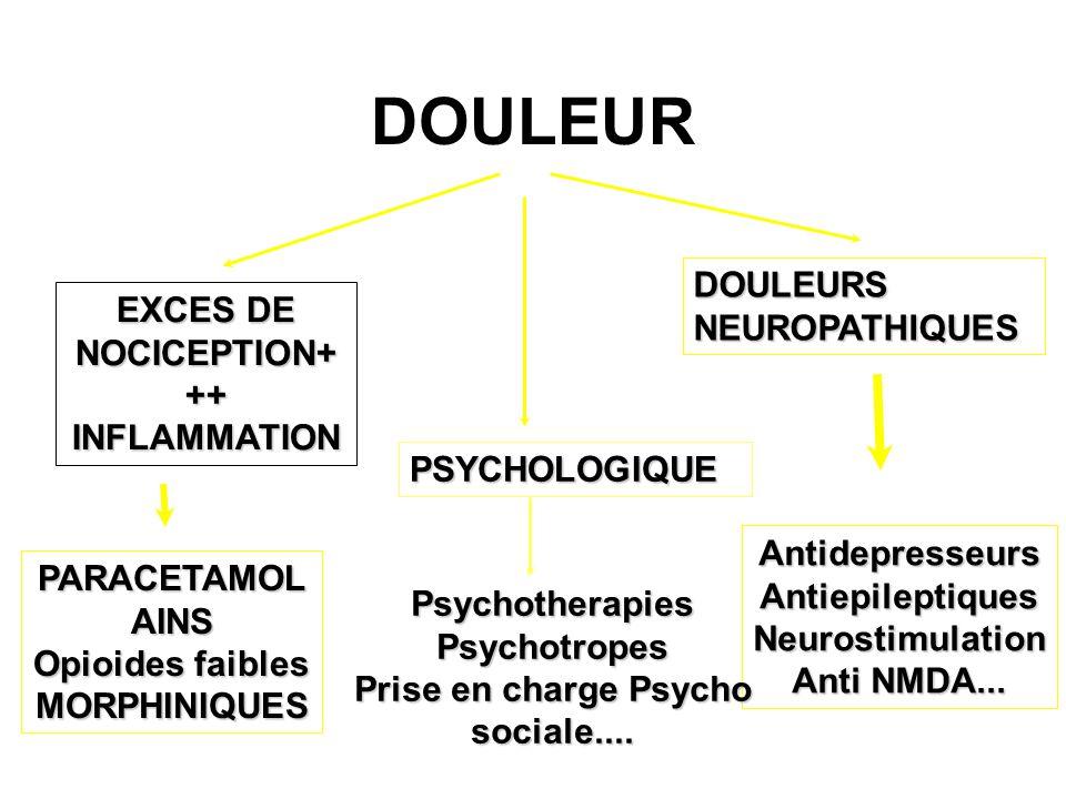 DOULEUR EXCES DE NOCICEPTION+ ++ INFLAMMATION DOULEURSNEUROPATHIQUES PSYCHOLOGIQUE PARACETAMOLAINS Opioides faibles MORPHINIQUES AntidepresseursAntiepileptiquesNeurostimulation Anti NMDA...