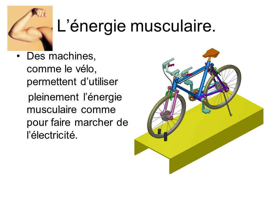 Lénergie musculaire.